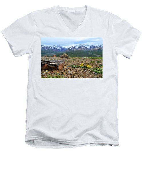 Men's V-Neck T-Shirt featuring the photograph Polychrome Pass, Denali by Zawhaus Photography