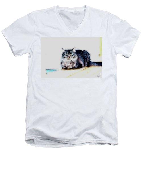 Portrait Of Maine Coon, Mattie Men's V-Neck T-Shirt