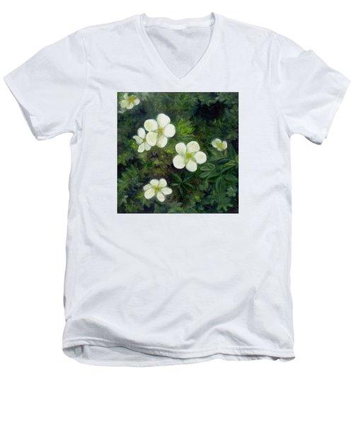 Potentilla Men's V-Neck T-Shirt