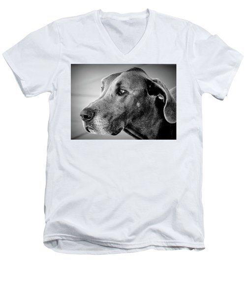 Men's V-Neck T-Shirt featuring the photograph Powerful Majesty by Barbara Dudley
