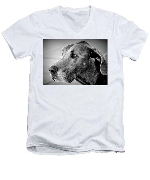 Powerful Majesty Men's V-Neck T-Shirt by Barbara Dudley
