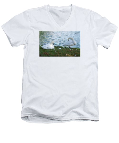 Preening Swans Men's V-Neck T-Shirt by Cathy Donohoue