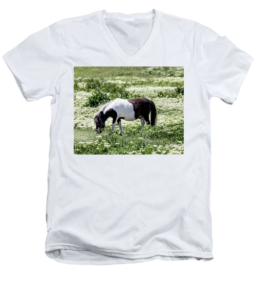 Pretty Painted Pony Men's V-Neck T-Shirt by James BO Insogna