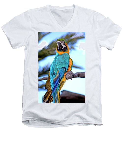 Pretty Parrot Men's V-Neck T-Shirt