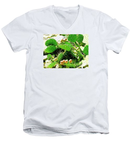 Men's V-Neck T-Shirt featuring the photograph Prickly Pear Cactus Fruit by Merton Allen