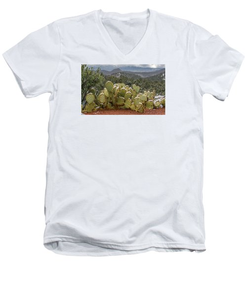 Cactus Country Men's V-Neck T-Shirt