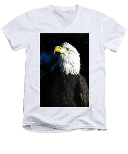Pride And Power Men's V-Neck T-Shirt