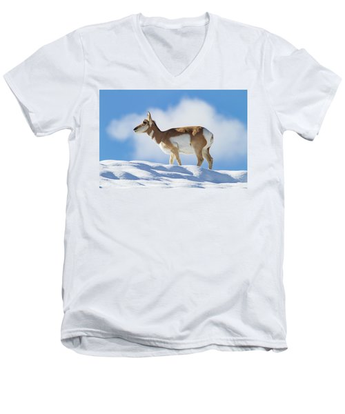 Pronghorn Doe On Snowy Ridge Men's V-Neck T-Shirt