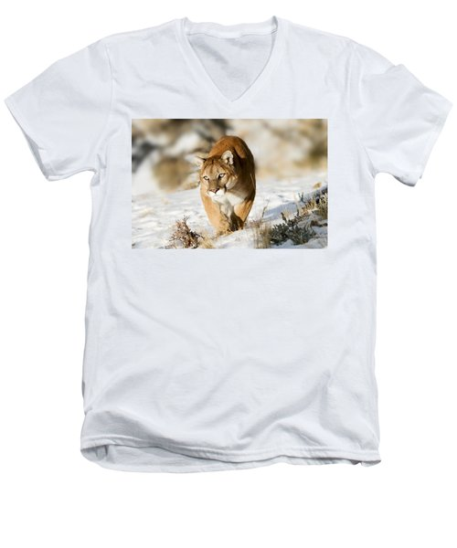 Prowling Mountain Lion Men's V-Neck T-Shirt