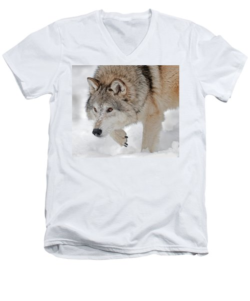 Prowling Wolf Men's V-Neck T-Shirt