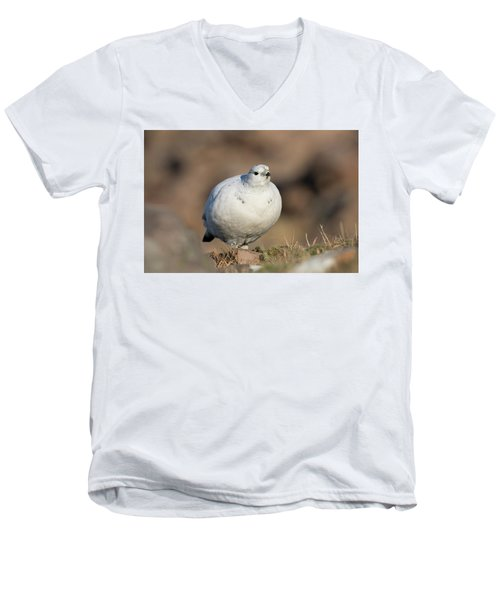 Ptarmigan Going For A Stroll Men's V-Neck T-Shirt