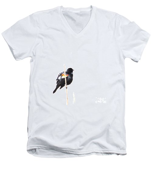 Puffed Up Red-winged Blackbird Men's V-Neck T-Shirt