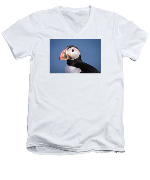 Puffin 1 Men's V-Neck T-Shirt by Brad Grove