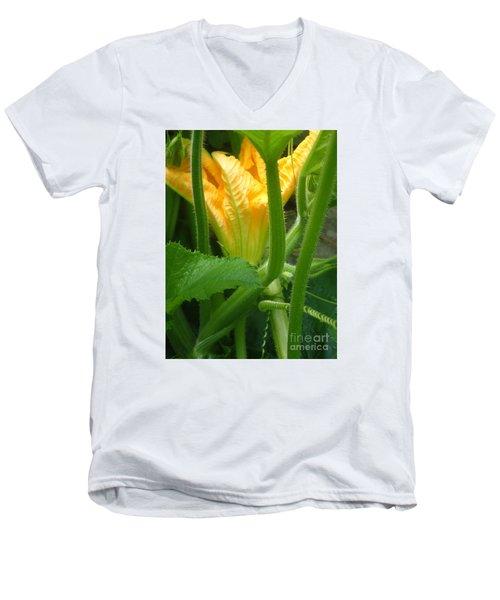 Men's V-Neck T-Shirt featuring the photograph Pumpkin Blossom by Christina Verdgeline
