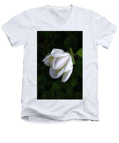 Purity In White Men's V-Neck T-Shirt