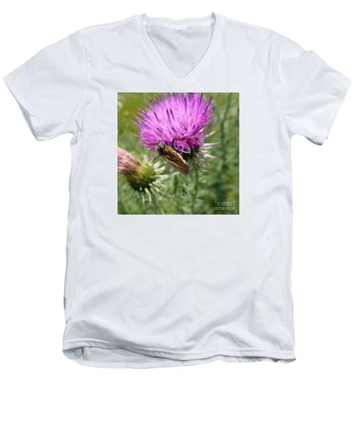 Purple Dandelions 1 Men's V-Neck T-Shirt
