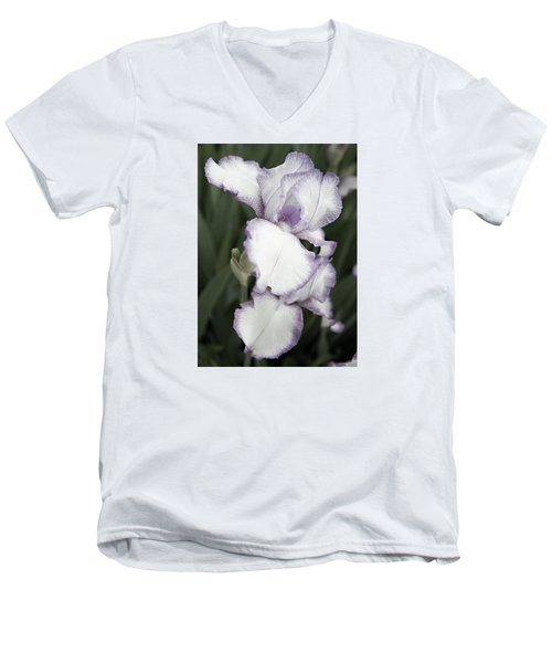 Purple Is Passion Men's V-Neck T-Shirt by Sherry Hallemeier
