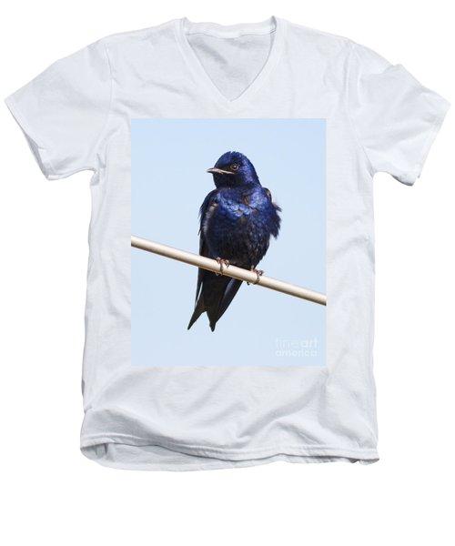 Purple Martin Men's V-Neck T-Shirt