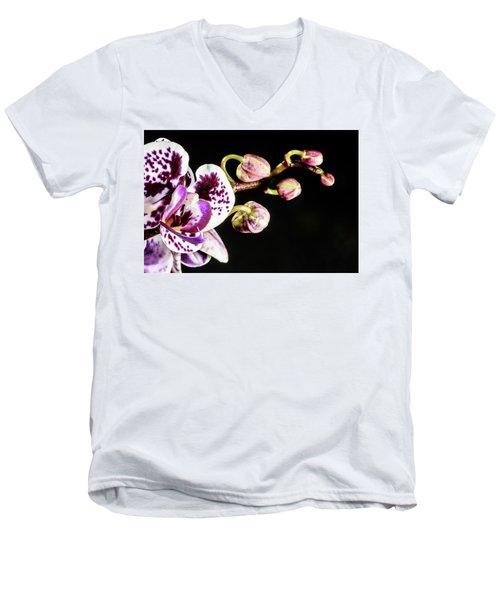 Purple Orchid Reaching Out Men's V-Neck T-Shirt