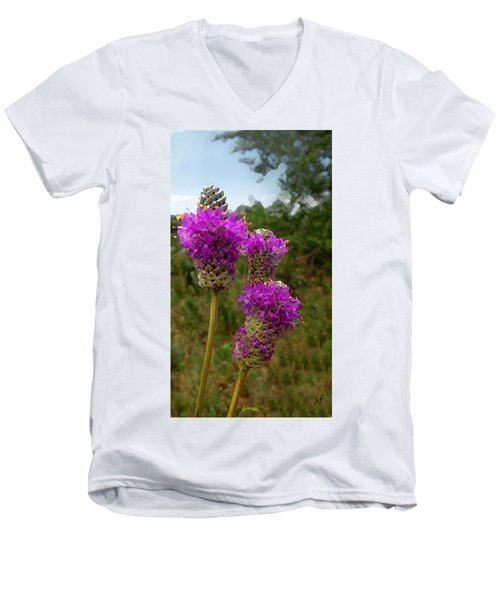 Purple Prairie Clover Men's V-Neck T-Shirt