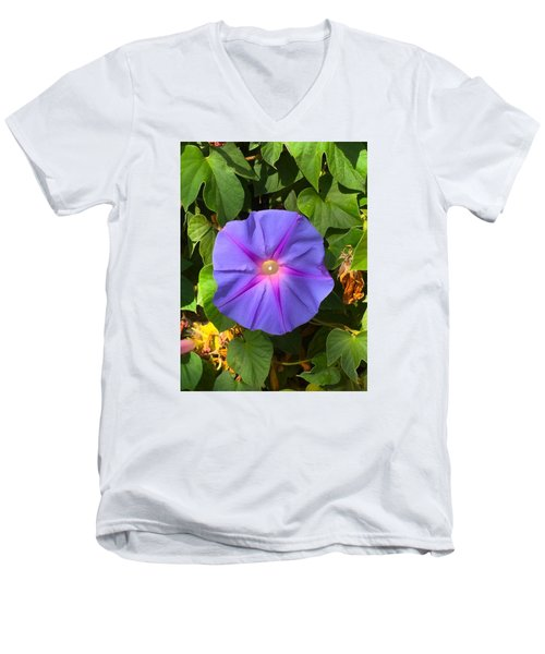 Purple Star Men's V-Neck T-Shirt