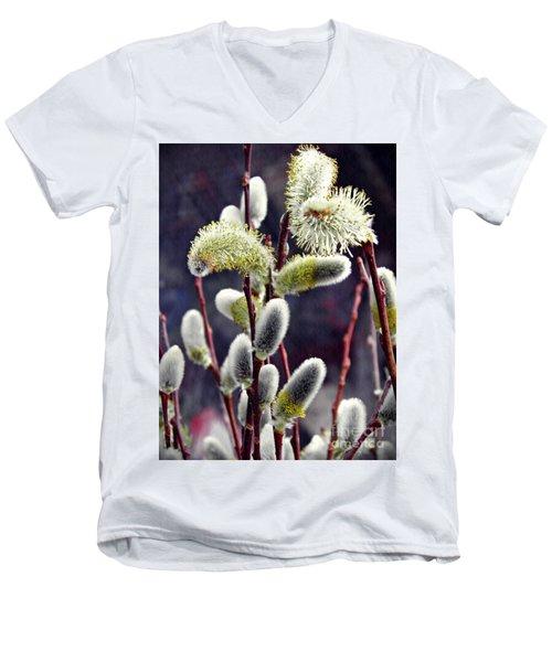 Pussy Willow Spring  Men's V-Neck T-Shirt