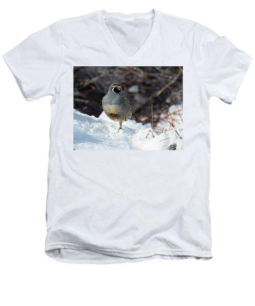 Quail Hollow Men's V-Neck T-Shirt by Scott Warner