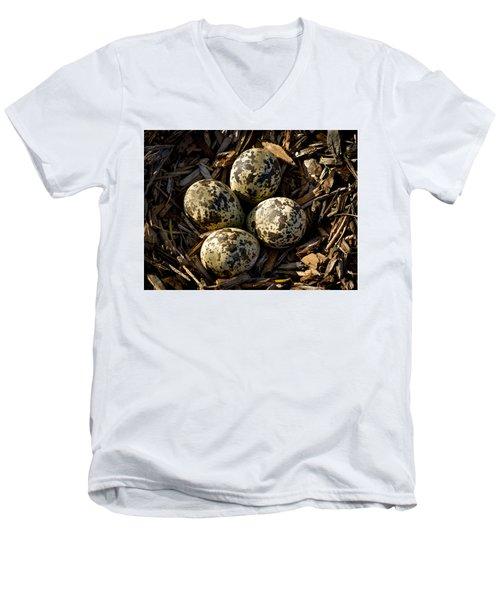 Quartet Of Killdeer Eggs By Jean Noren Men's V-Neck T-Shirt