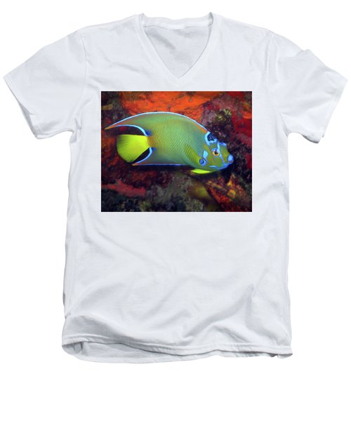 Queen Angelfish, U. S. Virgin Islands 2 Men's V-Neck T-Shirt