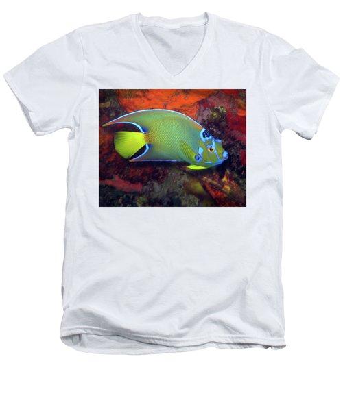 Queen Angelfish, U. S. Virgin Islands 2 Men's V-Neck T-Shirt
