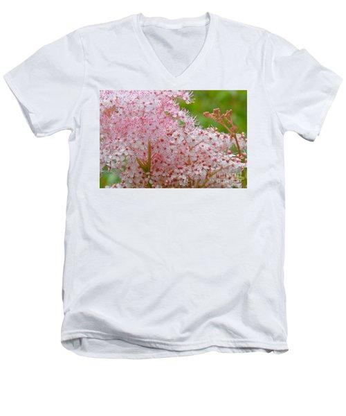 Queen Of The Prairie Nature Art Men's V-Neck T-Shirt