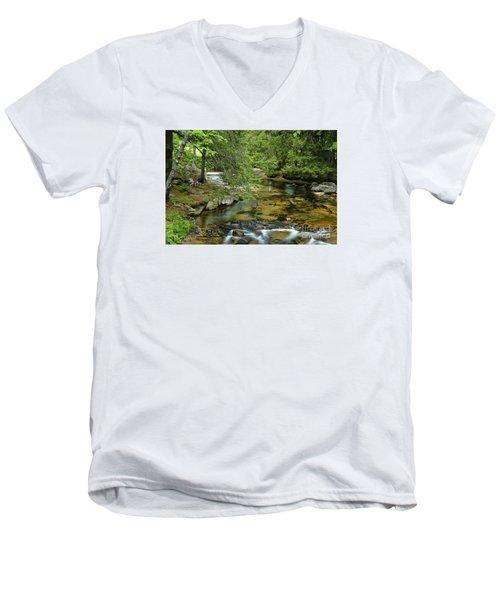 Quiet Place Men's V-Neck T-Shirt by Alana Ranney