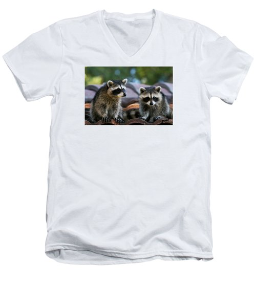 Racoons On The Roof Men's V-Neck T-Shirt by Dorothy Cunningham