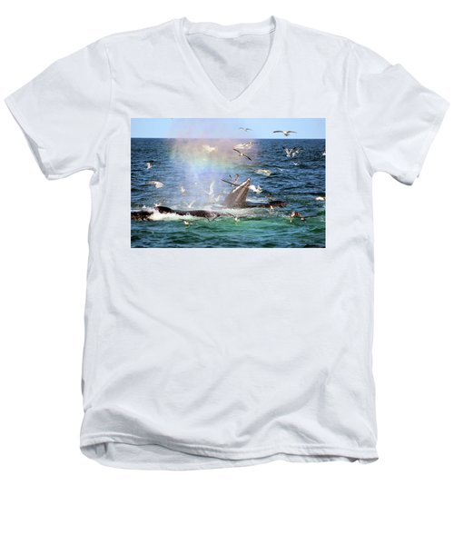 Rainbow In The Spray 1 Men's V-Neck T-Shirt