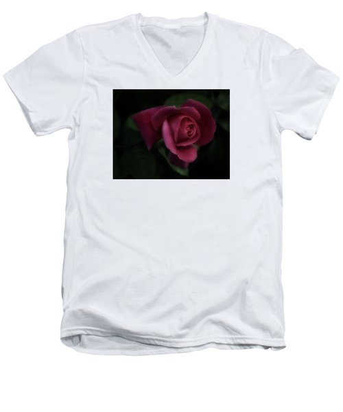 Rambling Rose Men's V-Neck T-Shirt by Richard Cummings