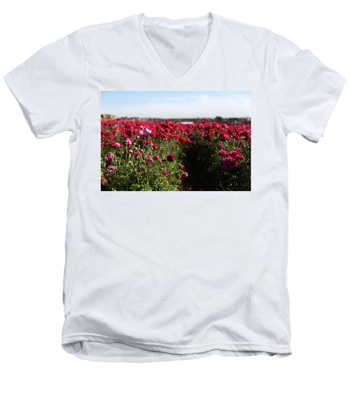 Ranunculus Field Men's V-Neck T-Shirt