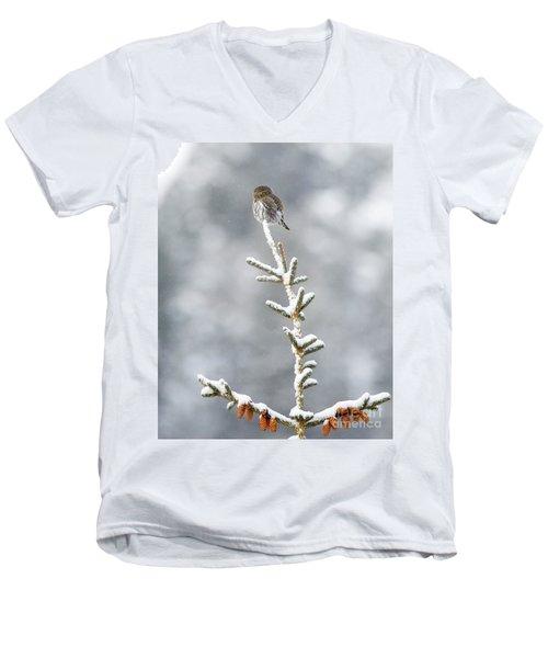 Reaching For The Heavens Men's V-Neck T-Shirt
