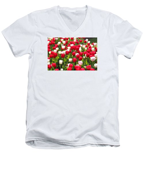 Red And White Tulips Men's V-Neck T-Shirt by Bev Conover