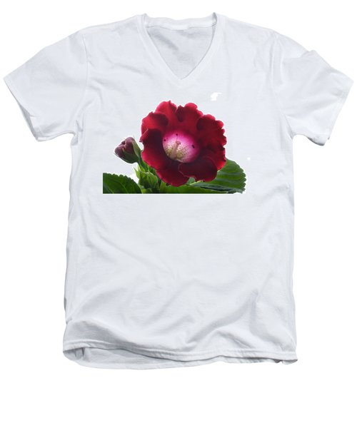 Red Gloxinia. Men's V-Neck T-Shirt