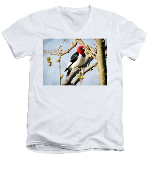Men's V-Neck T-Shirt featuring the photograph Red-headed Woodpecker At A Glace  by Ricky L Jones