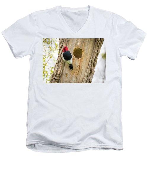 Red-headed Woodpecker At Home Men's V-Neck T-Shirt by Ricky L Jones