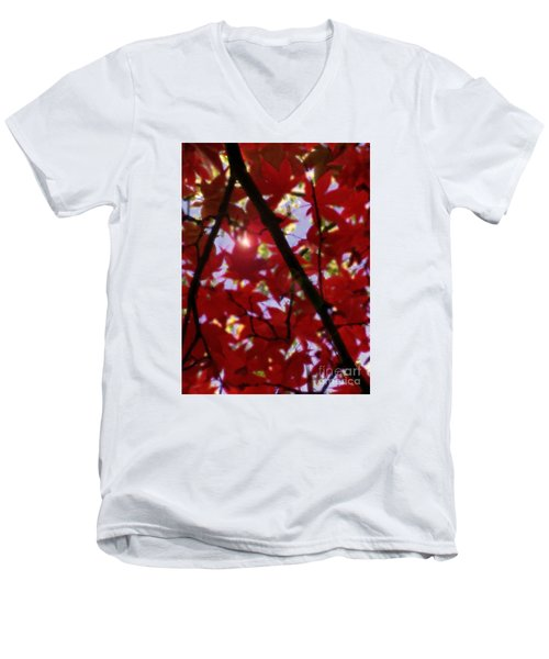 Men's V-Neck T-Shirt featuring the digital art Red Leaves In Light by Haleh Mahbod