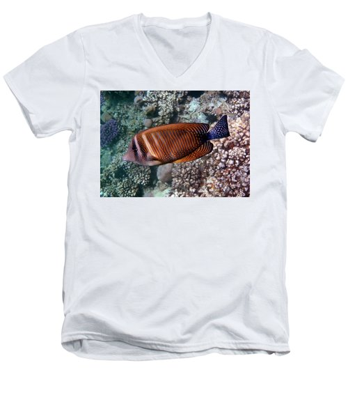 Red Sea Sailfin Tang 3 Men's V-Neck T-Shirt