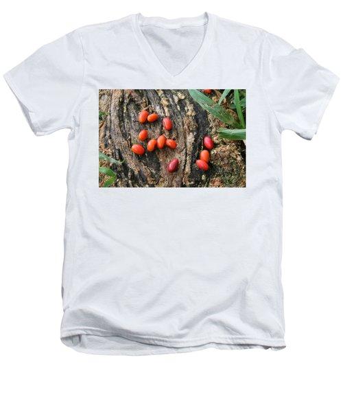 Red Seeds Men's V-Neck T-Shirt