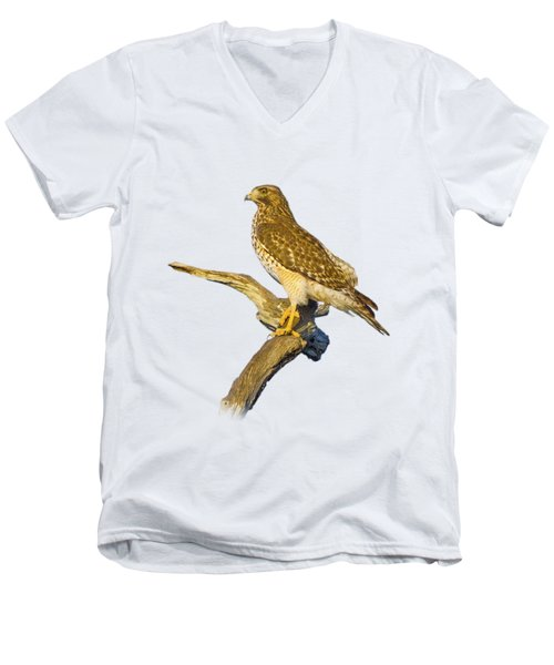 Red Shouldered Hawk Perch Men's V-Neck T-Shirt