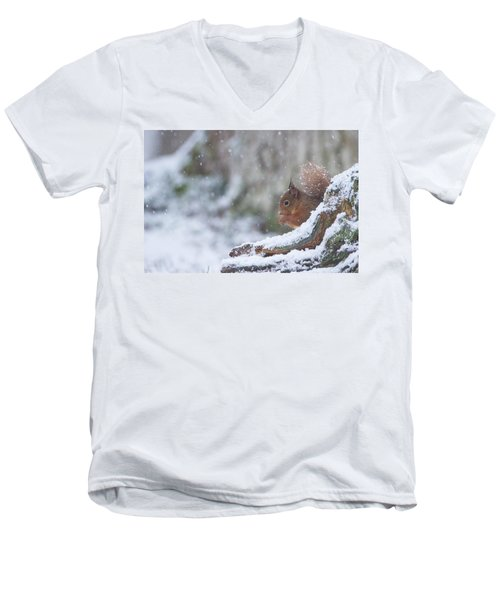 Red Squirrel On Snowy Stump Men's V-Neck T-Shirt