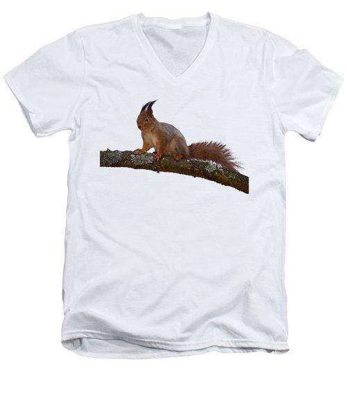 Red Squirrel Transparent Men's V-Neck T-Shirt
