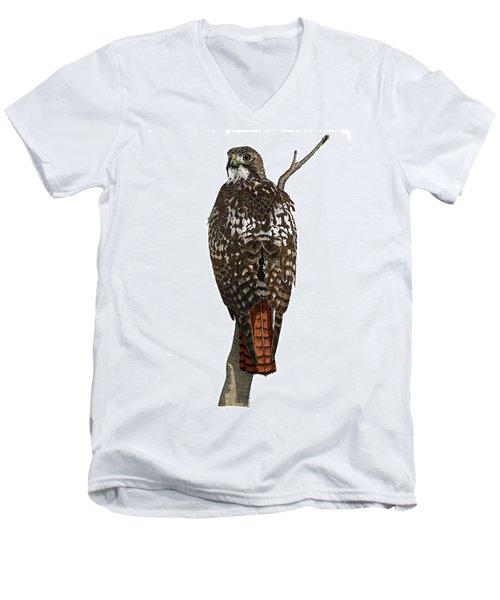 Red-tailed Hawk - Color Men's V-Neck T-Shirt