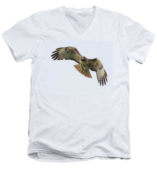 Red Tailed Hawk Finds Its Prey Men's V-Neck T-Shirt