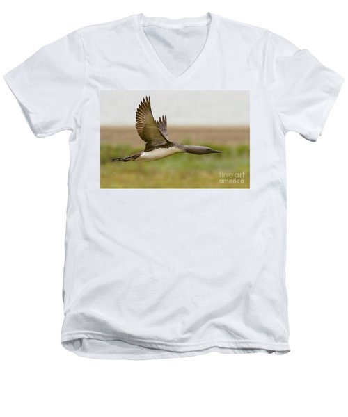 Red-throated Loon In Flight Men's V-Neck T-Shirt